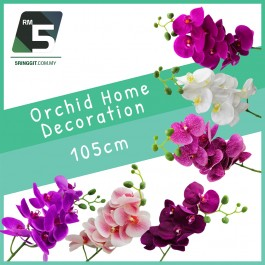 Orchid Home Decoration